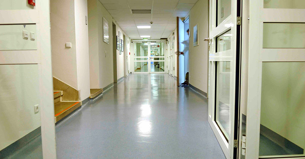 Seamless Terrazzo And Epoxy Floors For Hospitals And Other